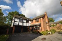 Detached home to rent in Graham Road, Windlesham
