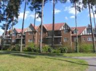 2 bed Flat to rent in Ramsdell Road...