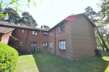 Flat to rent in Habershon Drive, Frimley...