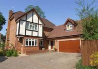 6 bed Detached house to rent in Portesbery Road...