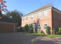 5 bed Detached home to rent in Portsmouth Road...
