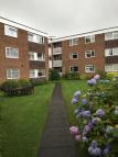 Flat to rent in Available March -...