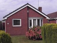 Detached Bungalow to rent in 86 Hamilton Drive...