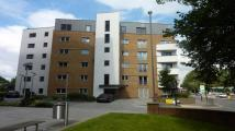1 bed Apartment to rent in Butts, Earlsdon, Coventry