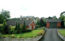 Detached Bungalow for sale in Rodborough, Stroud...