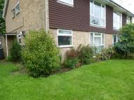 Flat to rent in Rushmead Close...