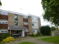 Flat to rent in Downs Road, CANTERBURY