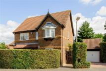 Detached house in Strouts Road, Ashford...