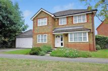 Detached property for sale in Warren View, Ashford...