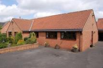 4 bed Detached Bungalow in 2 Hall Farm Croft...