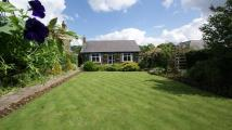 4 bed Detached Bungalow for sale in Southlea, Hope Road...