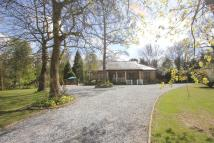 3 bedroom Detached Bungalow for sale in Hockley