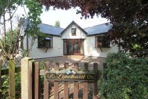 Detached Bungalow for sale in Ashingdon