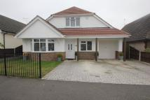 4 bed Detached house in Ashingdon