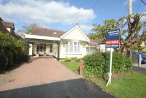 Detached Bungalow in Rochford