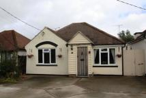 Detached Bungalow for sale in Canewdon, Rochford