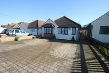Detached Bungalow in Canewdon