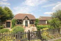 3 bedroom Detached Bungalow in Ashingdon