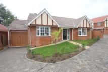 Detached Bungalow in Hawkwell