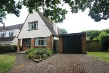 3 bedroom Detached home in Hockley