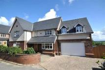 4 bed Detached house to rent in Pennant View, Gorsedd...