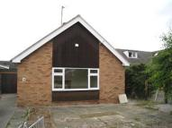 Semi-Detached Bungalow to rent in Roe Park, St Asaph...