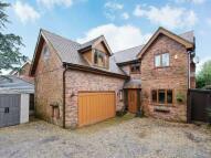 Preston Road house to rent