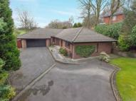 3 bedroom Bungalow to rent in Westerly, Princess Road...