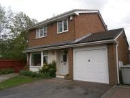 Detached property to rent in 34 Primrose Avenue...
