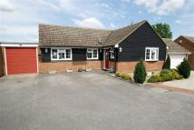 Detached Bungalow in Whitemead, Chelmsford...