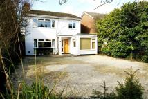 Detached property in Maltese Road, Chelmsford...