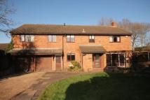 5 bedroom Detached house for sale in 36 Kimbolton Avenue...