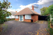 3 bedroom Detached Bungalow in St Neots Road, Sandy...