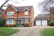 Detached property for sale in Dorsey Drive, Bedford...