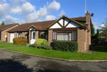 Detached Bungalow to rent in Wheathampstead...