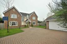 5 bed Detached property for sale in Redshank Drive...