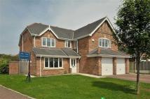 Detached house in Redshank Drive...