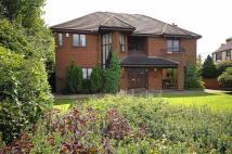 5 bed Detached home to rent in Holmlee Way, Prestbury...