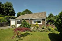 Hazelhurst Drive Detached Bungalow for sale