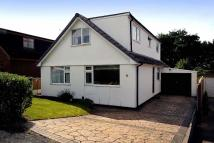 4 bedroom Bungalow to rent in Cedarway, Bollington...