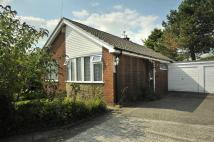 Bungalow in Ward Avenue, Bollington...