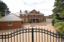 5 bedroom Detached house in Heybridge Lane...
