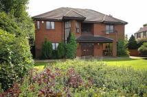 5 bedroom Detached home to rent in Holmlee Way, Prestbury...