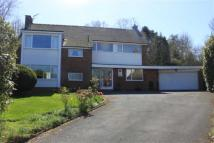 4 bed Detached house in Yew Tree Close...
