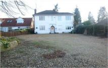 Detached house for sale in Station Road, Cogenhoe...