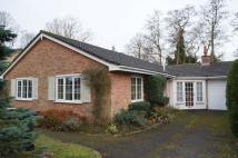 Detached Bungalow for sale in Arnhem Way, Woodhall Spa