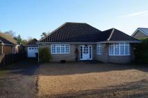 Stanhope Road Detached Bungalow for sale