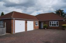 Detached Bungalow for sale in Pear Tree Close...