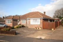 Semi-Detached Bungalow for sale in Ashfield Road, Chesham...