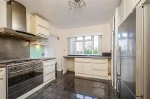 4 bed Apartment to rent in Hill Brow, Richmond